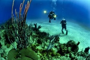 Fun Things To Do While Boating: Diving